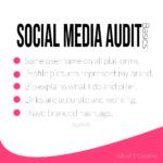 SM Audit Basic